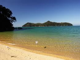 חוף בניו זילנד