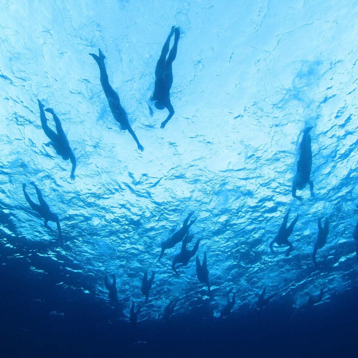 שחיינים בים